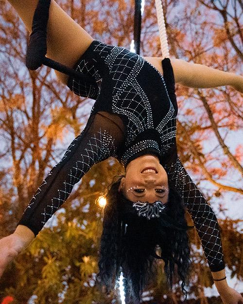 Aerial and Circus Professionals